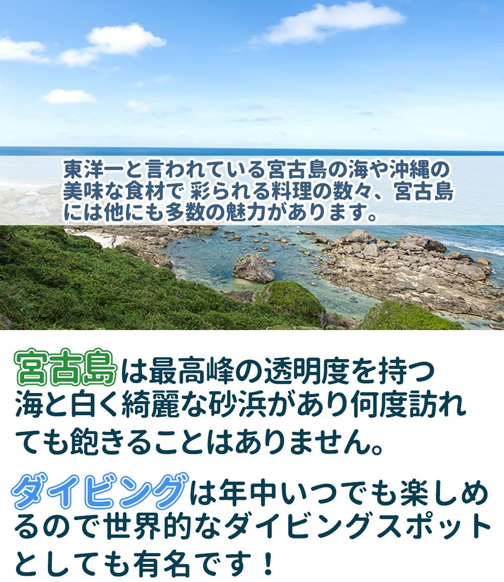 miryoku-gazou-1-2